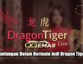 Fakta Keuntungan Dalam Bermain Judi Dragon Tiger Online